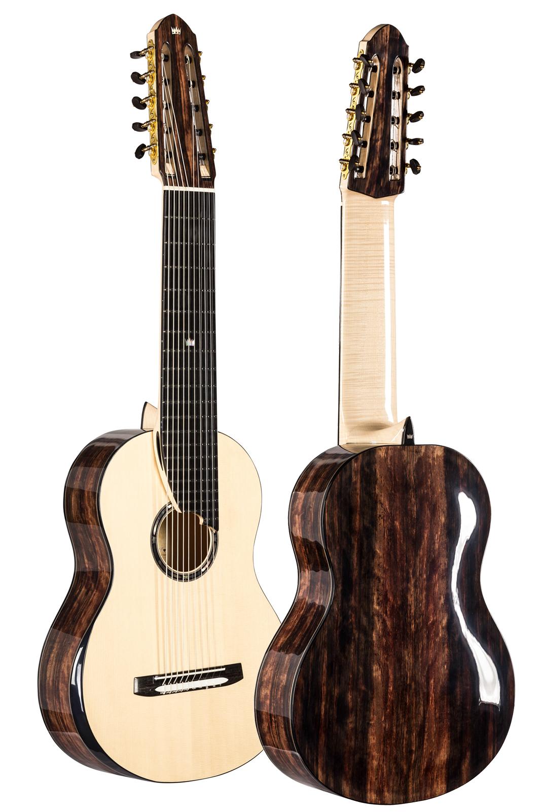 Multi String Guitars