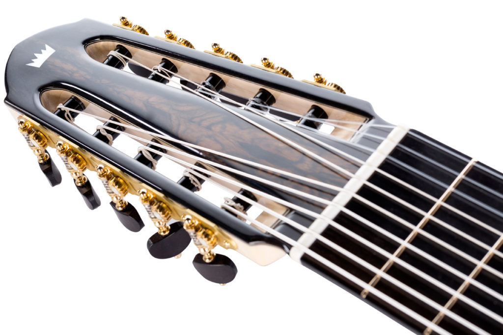 10-string classical guitar head