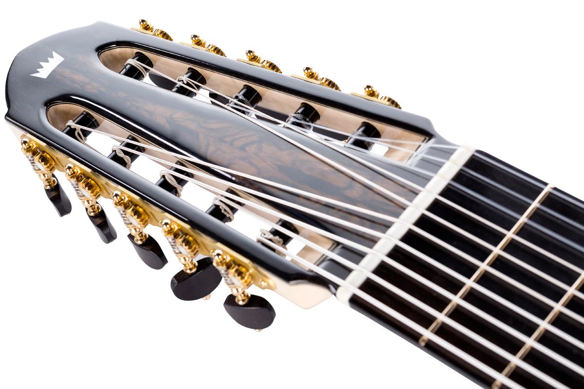 10-string classical guitar head