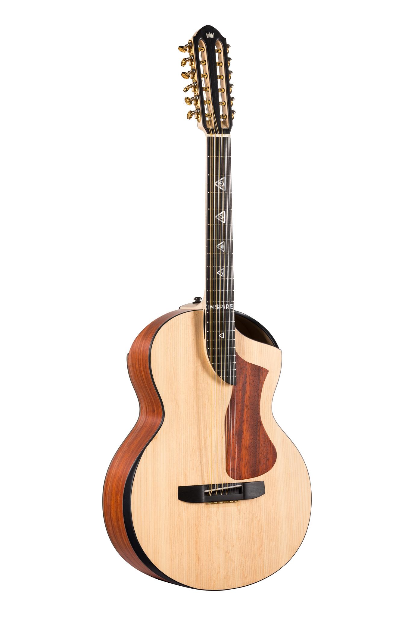 12's acoustic guitar