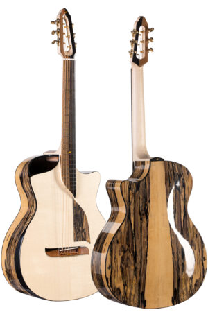 Guitar front and back GA